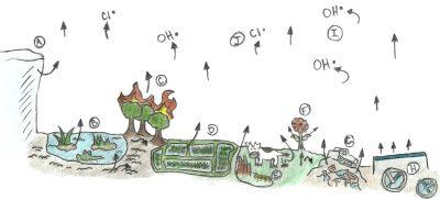 מקורות פליטת המתאן מאת אוליביה שופ