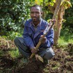 חקלאי באתיופיה על חלקת השקיה בטרסה