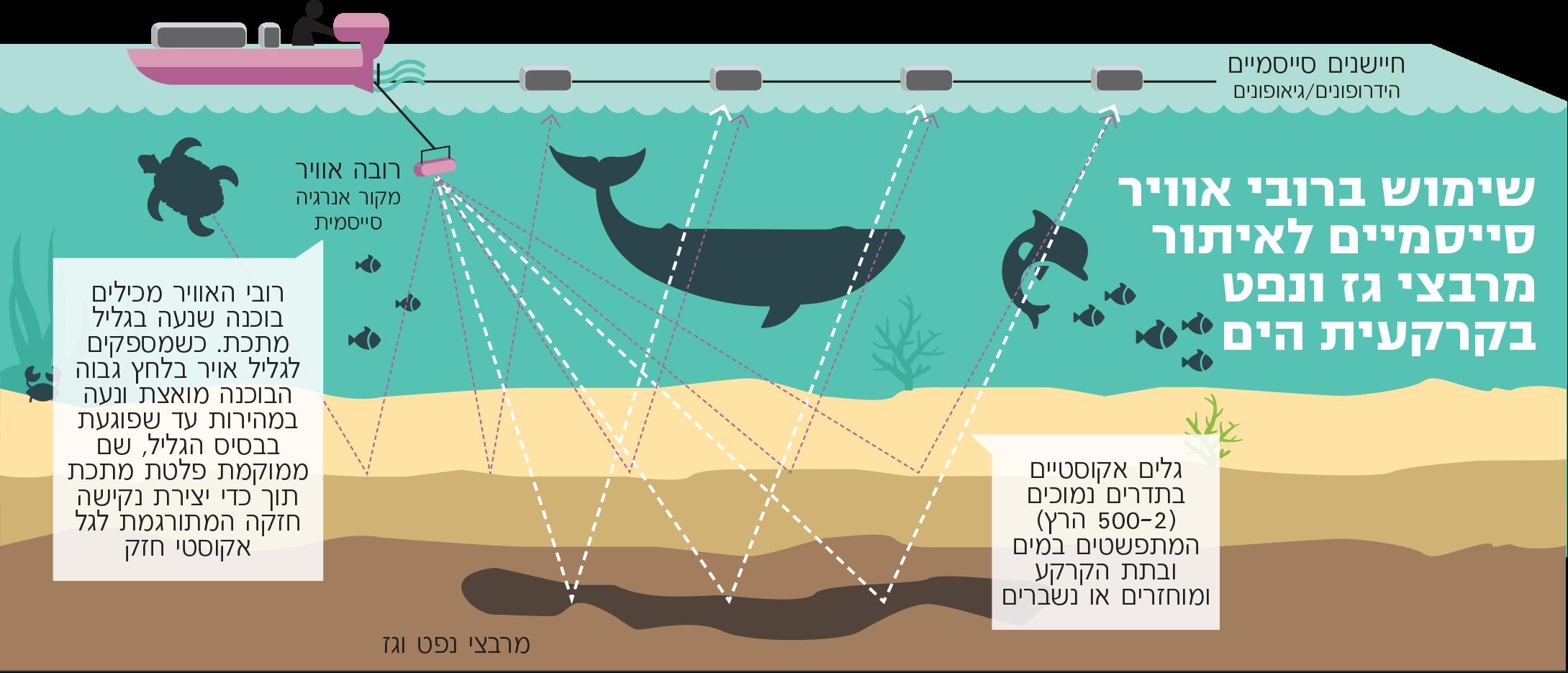תרשים של סקרים סיסמיים בים