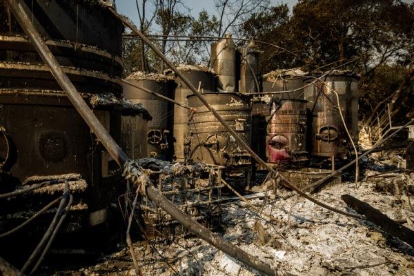 יקב שרוף בסנטה רוסה, קליפורניה